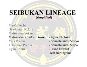 Seibukan Lineage